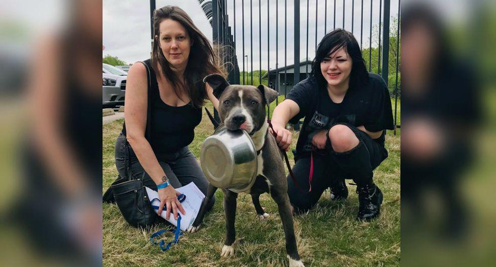 Usuarios de Facebook no pudieron evitar conmoverse al conocer la historia del can. (Foto: Memphis Animal Services)