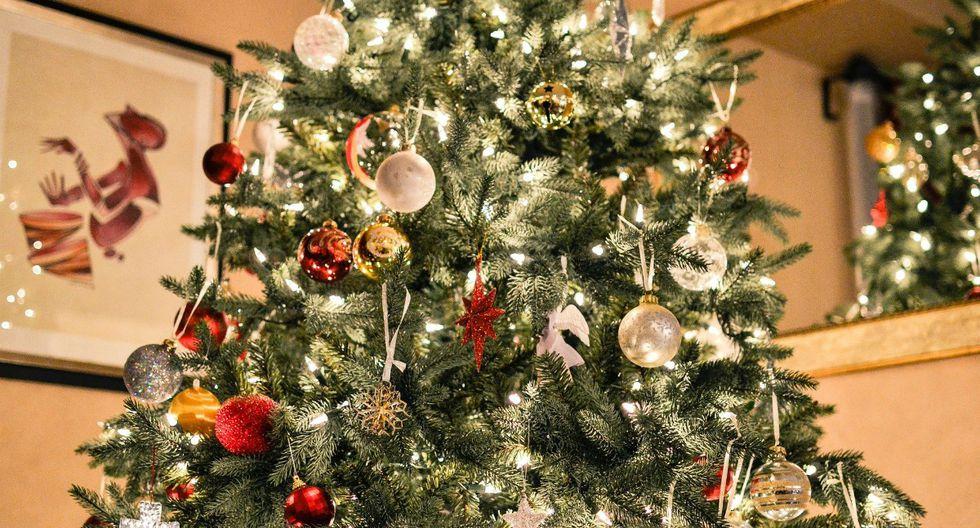 Un gato se escondió en un árbol de Navidad y se convirtió, sin querer, en el responsable de un complicado reto visual. (Foto: Referencial/Pixabay)