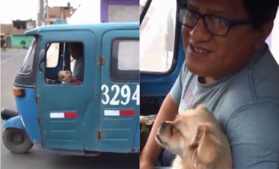 Mototaxista sale a trabajar junto a su pequeña mascota para no dejarla sola en casa | VIDEO