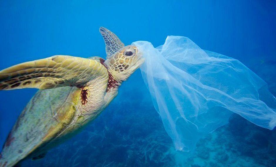 Tailandia forma parte de los países que vierten más plástico a los océanos (Foto: Troy Mayne)