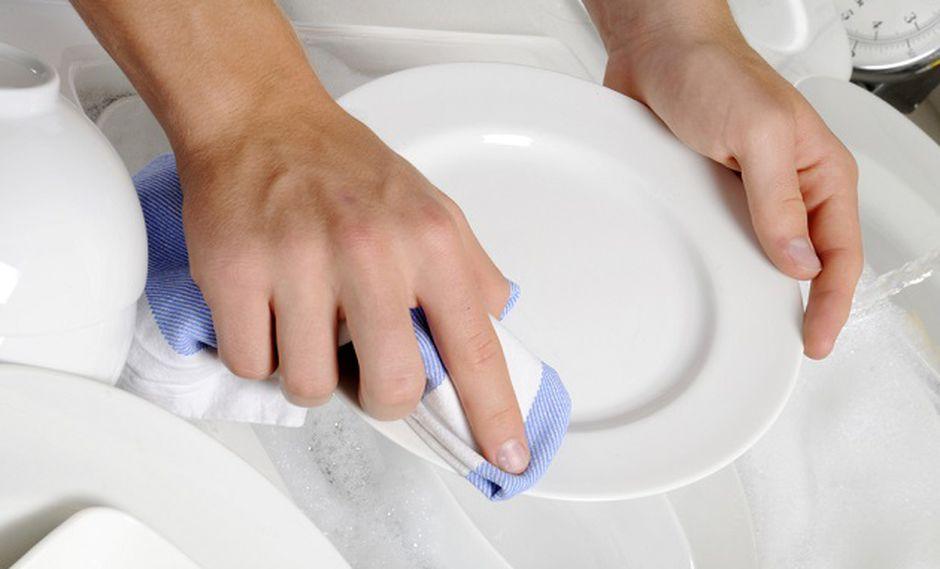 Científicos encontraron crecimiento bacteriano en los paños de cocina (Foto: Shutterstock)