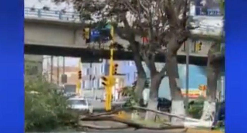 Se reportaron árboles caídos en el Callao producto de los fuertes vientos. (Canal N)