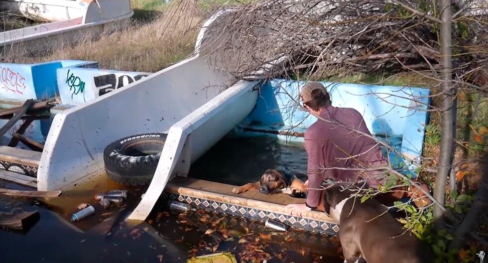 Se cruzaron con perros en parque acuático abandonado, los siguieron y realizaron estremecedor hallazgo. El video es viral en redes sociales. (Facebook | The Dodo)