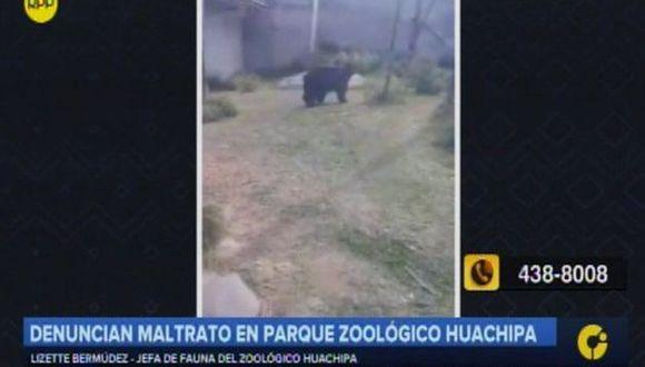 Zoológico de Huachipa niega maltrato animal (Captura: RPP Noticias)