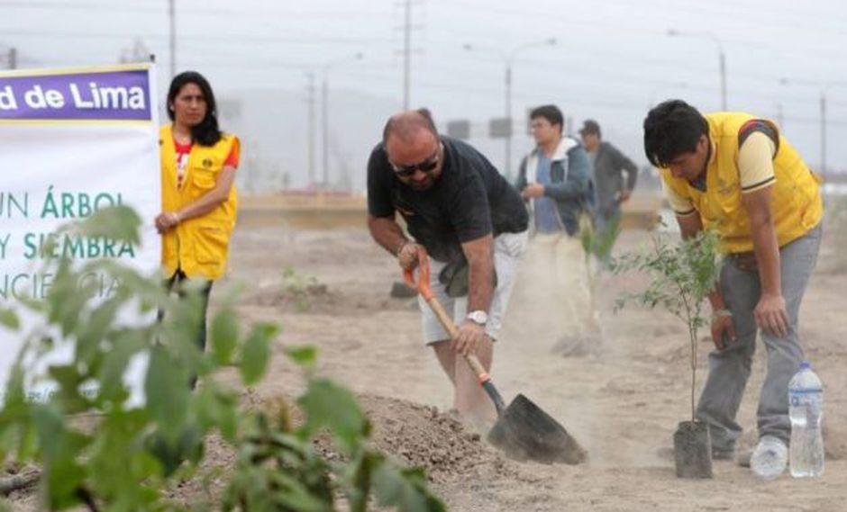 Vecinos siembran dos mil árboles por iniciativa 'Planta Un Árbol, Nace Una Vida' en Los Olivos