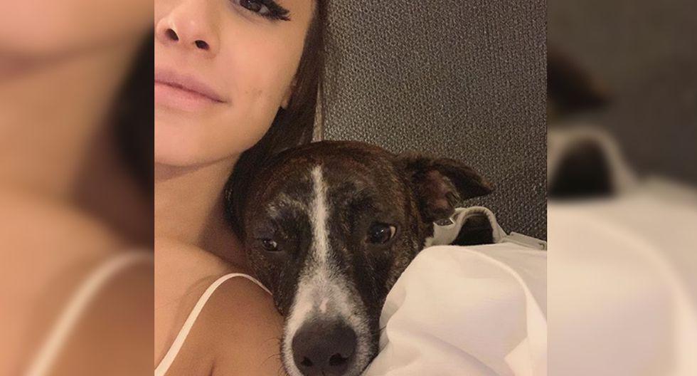 A través de su cuenta de Instagram, Ariana Grande comparte diversas instantáneas al lado de sus fieles mascotas. (Foto: Instagram)