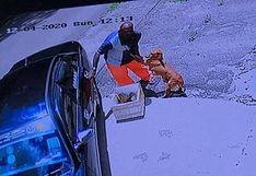 Perro es captado aferrándose a su dueño para que no lo abandone