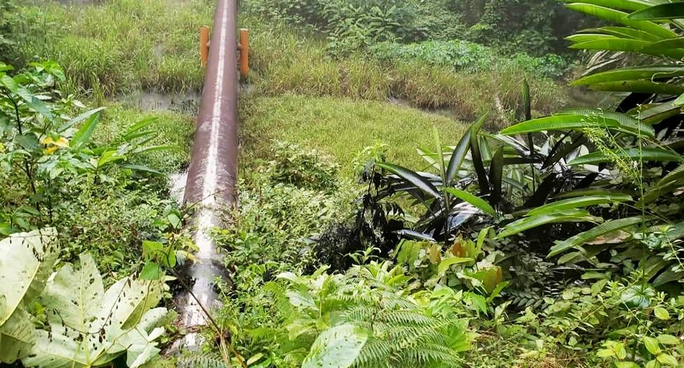 El Oleoducto Norperuano transporta petróleo en la selva. (Foto: Difusión)
