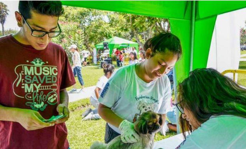 Municipalidad de Lince realizará campaña veterinaria gratuita este domingo