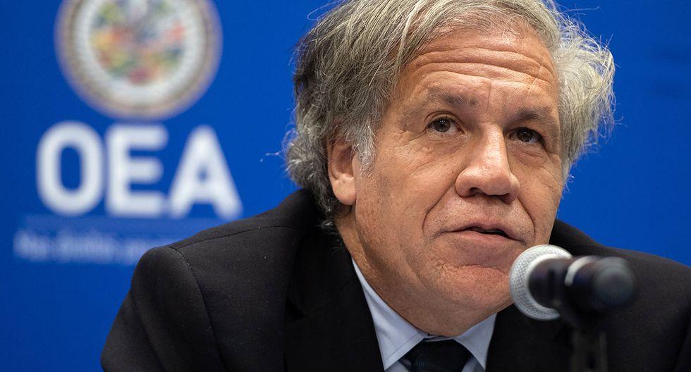 Luis Almagro estima que será reelecto como secretario general de la OEA. (Foto: AFP/Archivo)