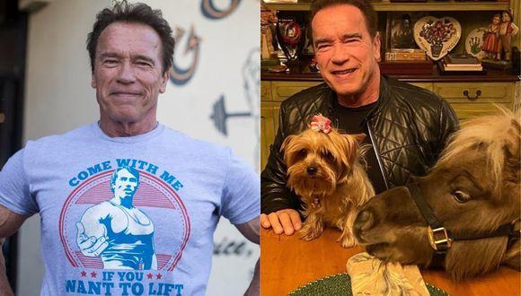 """El actor de """"Terminator"""" también se encuentra en cuarentena  (Foto: Instagram)"""
