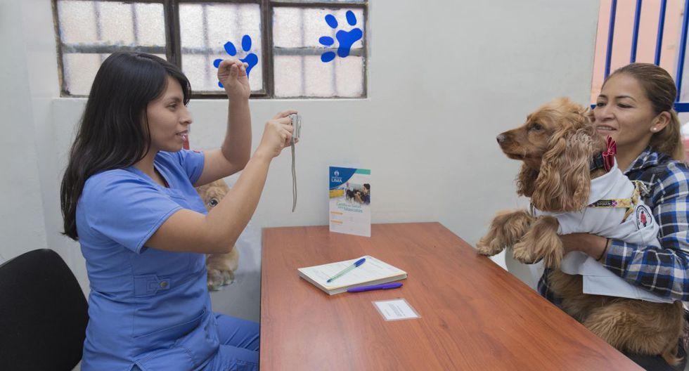 El empadronamiento de mascotas es a partir de los 6 meses de vida y luego de haber completado su rol de vacunación. (Municipalidad de Lima)