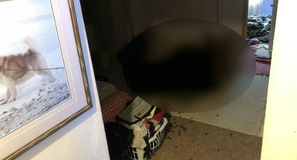 """Los dueños de la vivienda encontraron descansando al """"ladrón"""" que pensaron se había metido a su hogar. (Foto: CBS Denver en YouTube)"""